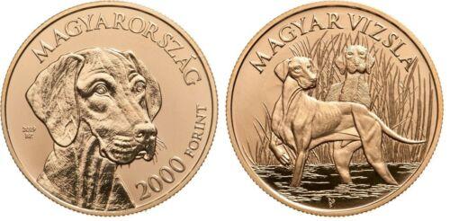 Hungary 2000 forint, Hungarian Vizsla Pointer Dog Free shipping, tracking number