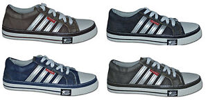 Mens-Canvas-Casual-Shoes-colour-Navy-Black-Brown-Size-6-to-11-Free-Postage