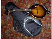 Epiphone A style Mandolin with strap and TGI Gig Bag