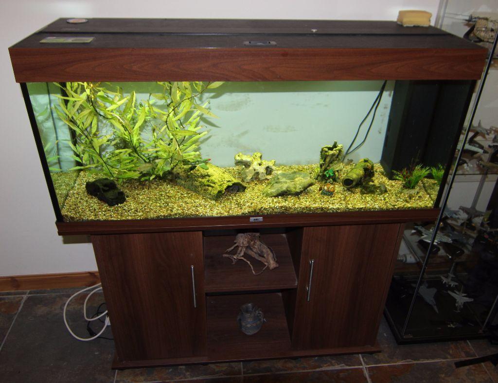 Juwel rio 240 aquarium fish tank - Juwel Rio 240 Aquarium Tank And Cabinet Dark Wood With Extras 4 Fish