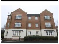 1 bedroom flat. Cardiff. Heath. For rent. Fully furnished. £625pcm