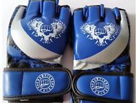 Furiousfistsuk MMA Synthetic Leather Gloves Blue/Silver Color