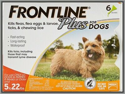 Frontline Plus Flea & Tick Control for Small Dogs 5-22 lbs, 6 Doses Box !