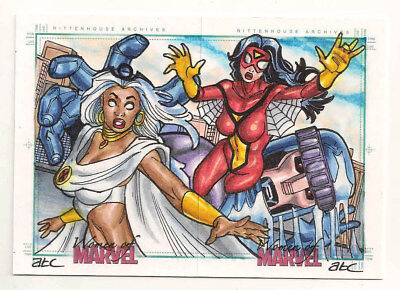 Women of Marvel Series 2 Dual Sketch Puzzle  Storm and Spider Woman   AWESOME!