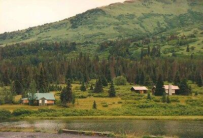 Vintage Photograph Denali National Park Mt. McKinley Alaska Scenic Views 1995 ()