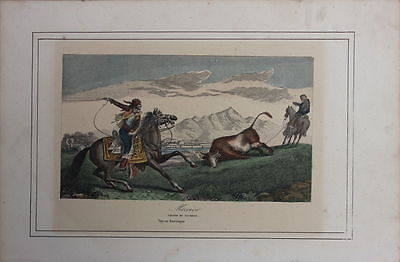 Mexikanische Gauchos bei der Stier-Jagd  Stahlstich, 19.Jahrhundert