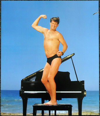 THE BEACH BOYS BRIAN WILSON POSTER PAGE . T81