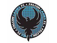 Friendly Ladies Football Team seeks Goalkeeper
