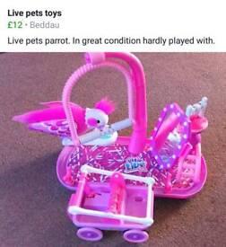 Live pets parrot toy