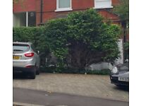 Parking Space in Hampstead, NW3, London (SP42473)