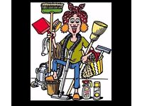 House Keeper/Cleaner Required