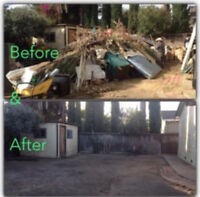 YARD or LOT CLEAN UP SERVICES
