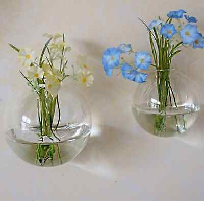 - Wall Hanging Clear Glass Vase Flower Plant Hydroponics Bottle Container Pot US