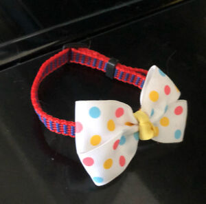 Cat collars & outfits