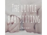 The Little Babysitting Company