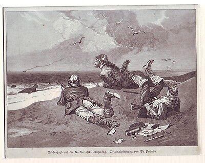 Holzstich   Robbenjagd  auf Nordseeinsel Wangeroog  1878  Th. Presuhn