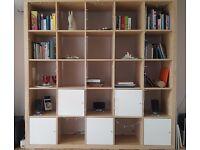 IKEA Expedit bookshelf with doors for living room, office or bedroom