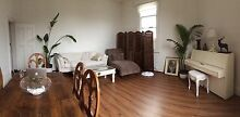 Looking for FEMALE housemate for classic home in Carlton North Carlton North Melbourne City Preview