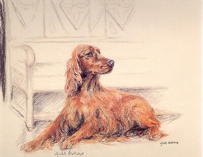 IRISH RED SETTER GUNDOG DOG LIMITED EDITION PRINT - Signed Artist Proof # 23/85