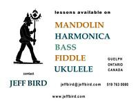 mandolin, harmonica,bass ,fiddle, ukelele