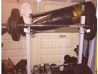 Various gym equipment, bench, ez bar, dumbells, adjustable dumbells & weight plates