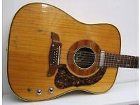 Old 1960's Hoyer 12-string