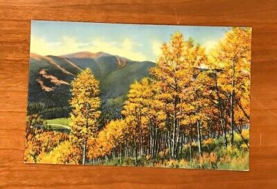 Autumn Colors, Trees, Mountains, Vintage Postcard, Not Used