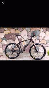 XC Moutain Bike