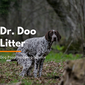 Dog poop yard cleaning services