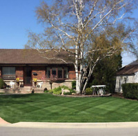 Great reliable Lawn cutting service greater Hamilton area