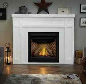 Napoleon Fireplace Buy Or Sell Home Appliances In