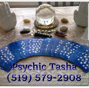 Psychic Tasha Palm & Card Readings $20 special