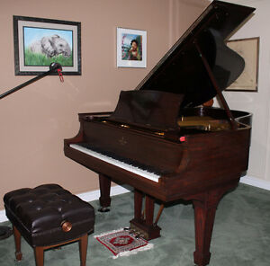 "Steinway Grand Piano - 6' 4"", Model A"