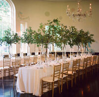 Beautiful Event Hall Available