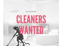 Domestic and Commercial Cleaning Associate