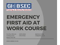 Emergency First Aid at Work Course (1 Day)