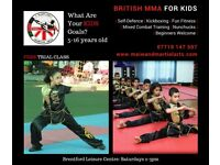 5+ years old | Free Trial Class | British MMA classes for kids/children in Brentford | Martial Arts