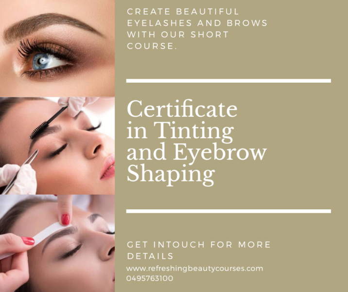 Tinting And Eyebrow Shaping Course Beauty Treatments Gumtree