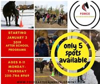 After school programs with Horses