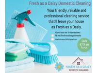 Fresh as a Daisy Domestic Cleaning- friendly and reliable domestic cleaning.