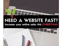 Need an affordable website fast! ready for Christmas shoppers?