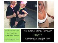 Cambridge Weight Plan