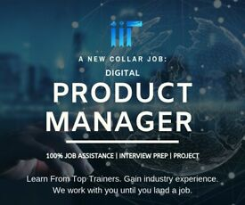 Product Manager Online Training - Real-time Projects + Job Help!