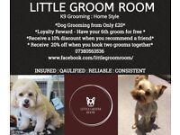 Little Groom Room