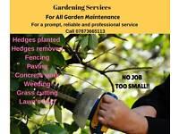 garden job