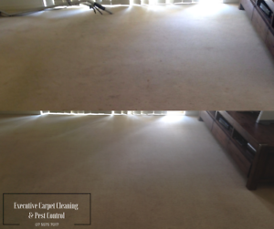 Carpet Cleaning 3 Rooms from $69.00