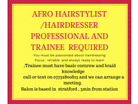 blackhairdresser or traineer wanted