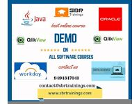 Work-Day Online training classes by SBR trainings