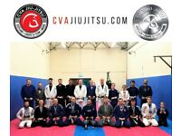 Brazilian Jiu-Jitsu classes