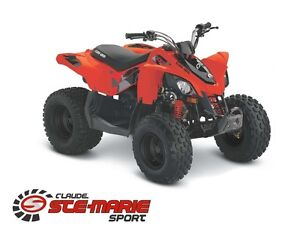 2017 can-am DS 90 -